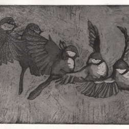 Linnun liiketutkielma, etching and aquatint