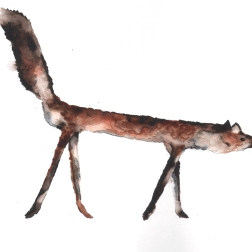 Badly stuffed animals; fox, aquarelle