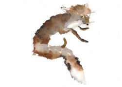 Badly stuffed animals; Fox, aquarelle