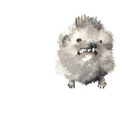 Badly stuffed animals; Hedgehog, aquarelle