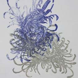 Chrysanthemum, woodcut 70cm x 50cm SOLD